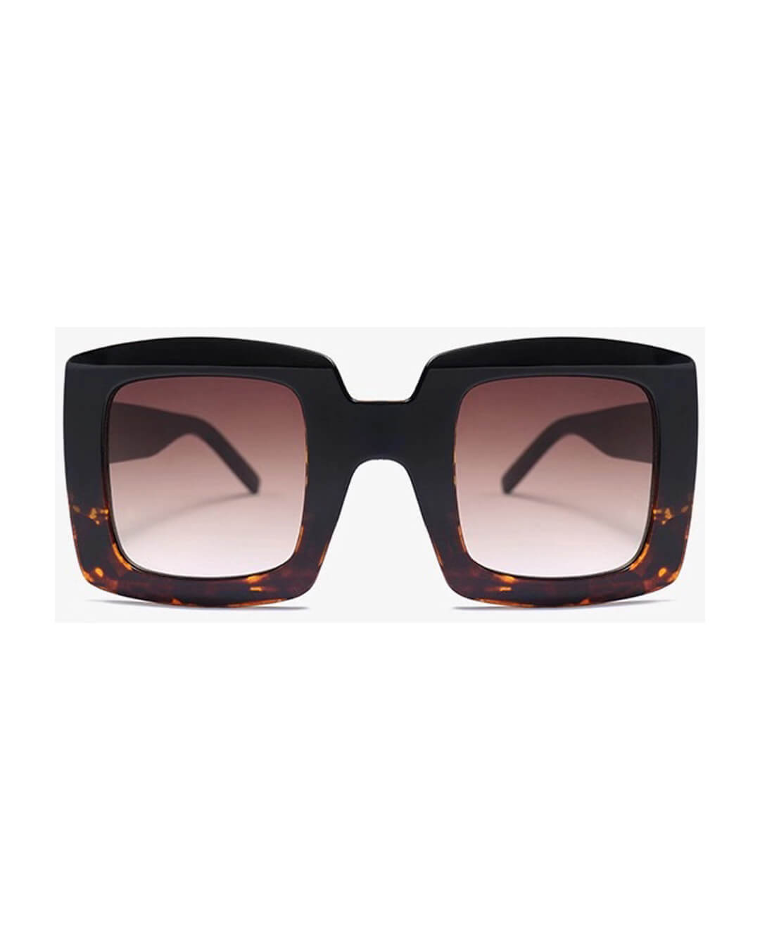 Dylan-Shades-Colour-Tortoise-3