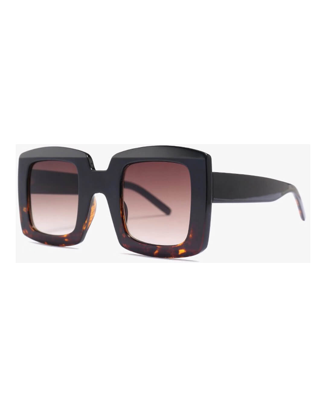 Dylan-Shades-Colour-Tortoise-5