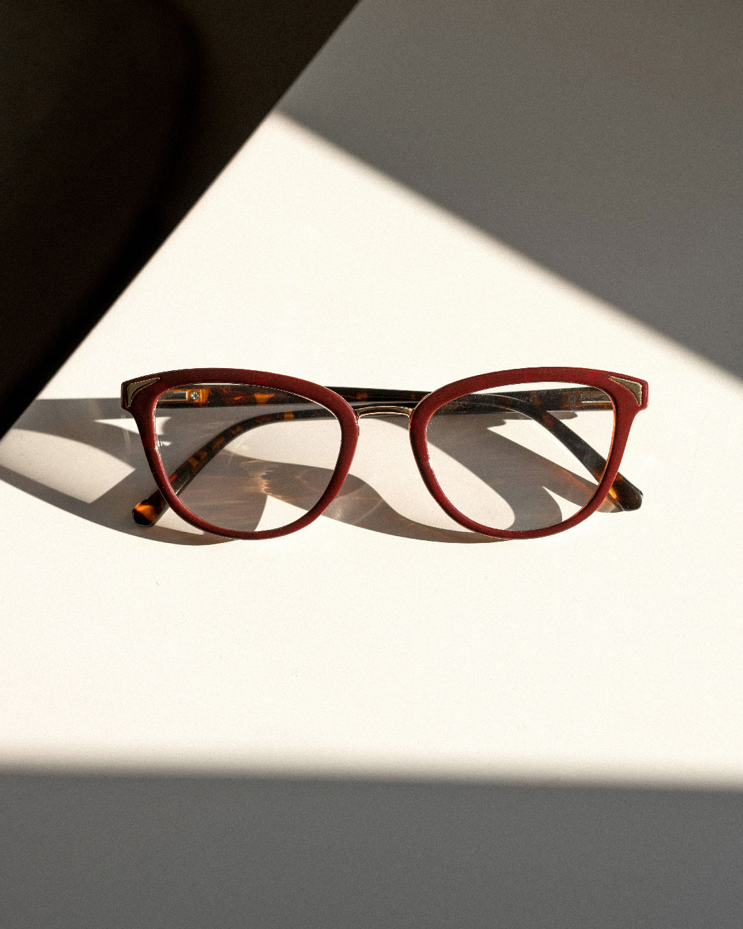 Square Burgundy Eyewear
