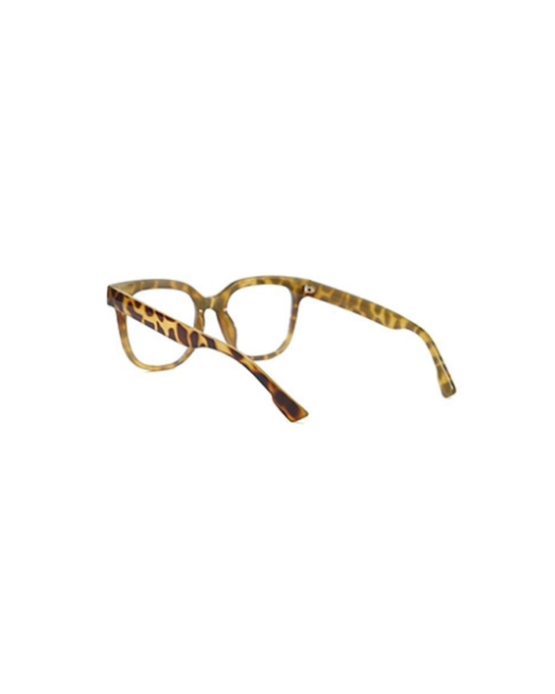 Clifton-Opticals---Tortoise-3
